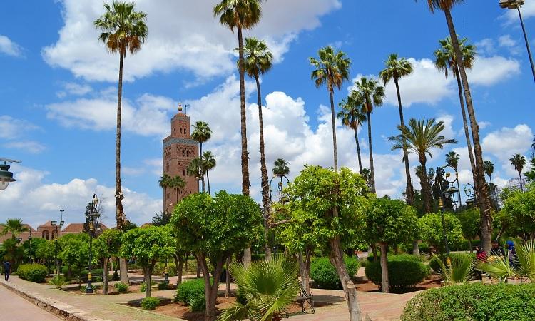 Marrakesz w Maroku