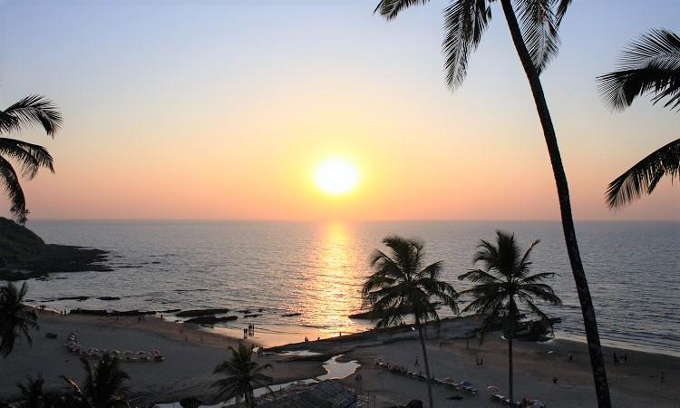 Egzotyczne widoki na Goa